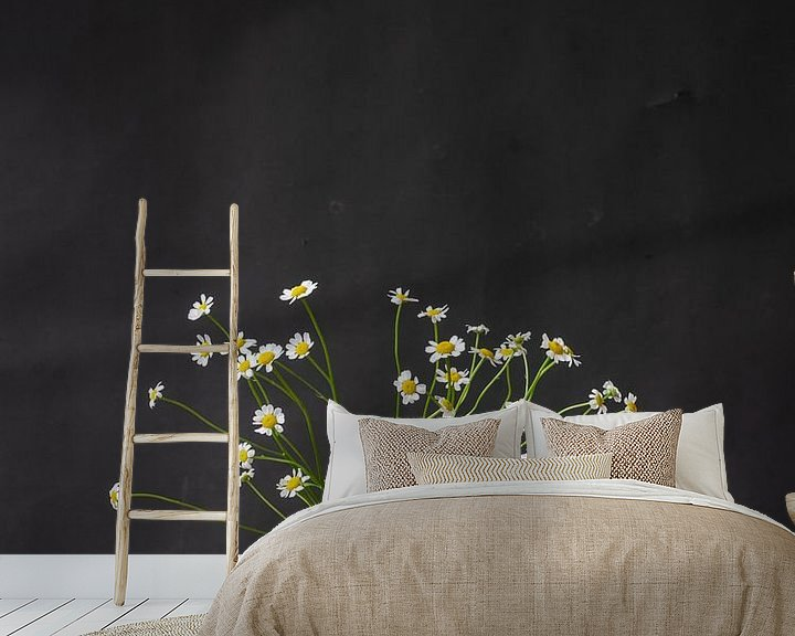 Sfeerimpressie behang: Foto print | modern | botanisch | bloemen | fotografie |madeliefjes | lente van Jenneke Boeijink