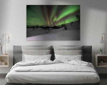 Het magische Noorderlicht boven Lapland van Daniel Van der Brug