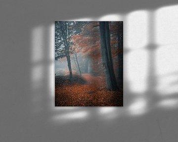 Mystieke sfeer in het bos van Arnold Maisner