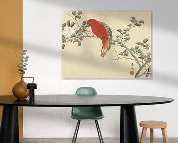Roter Papagei auf Zweig mit weißen Blüten, Matsumura Keibun - 1892