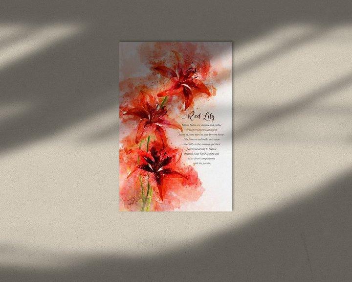 Beispiel: Rote Lilie von Theodor Decker