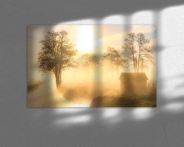 Un beau brouillard plane sur le paysage du Landgoed Nienoord à Leek. sur Bas Meelker