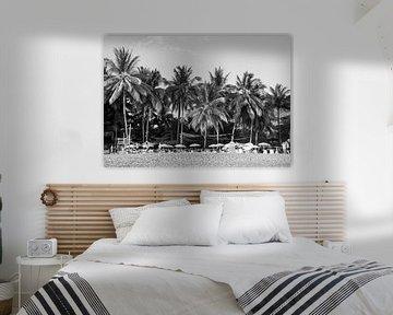Palmen Costa Rica von Bianca ter Riet