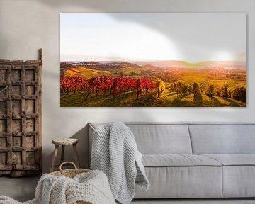 Wijngaarden in Stuttgart bij zonsondergang van Werner Dieterich