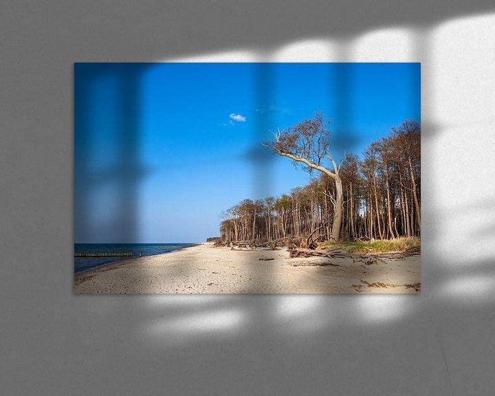 Beispiel: Strand an der Küste der Ostsee bei Graal Müritz von Rico Ködder
