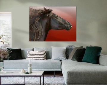 Pferd, Frysk hynder. (Friesenpferd) von Alies werk