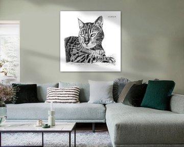 Ruhende Katze von Devon Leclercq