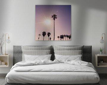 Palmen mit der Sonne von Bert Nijholt