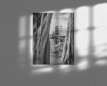 Le Golden Gate Bridge en noir et blanc