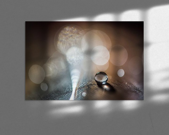 Sfeerimpressie: Waterdruppel op een veertje met bokeh achtergrond van Bert Nijholt