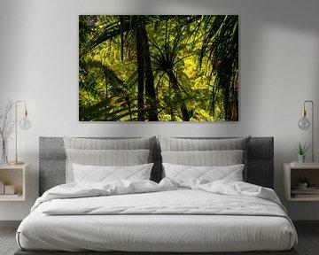 Bos met varens en palmbomen aan de westkust van Nieuw Zeeland van Paul van Putten