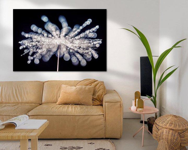 Sfeerimpressie: Waterdruppels op een pluisje met bokeh van Bert Nijholt