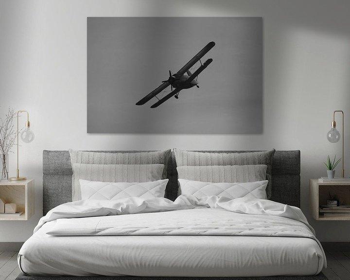 Beispiel: Antonow AN-2 Schwarz &Ampel; Weiß von Sebastiaan van der Ham