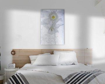 Witte narcis in ijs 3 van Marc Heiligenstein