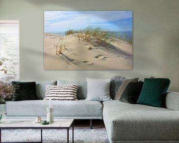 Dune du Pilat, Frankrijk van My Footprints