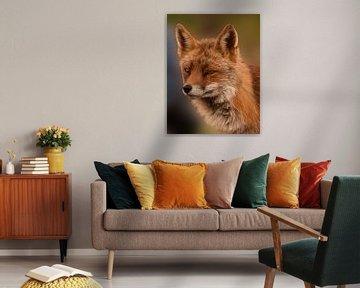 Bildnis eines Fuchses von Marjolein van Middelkoop