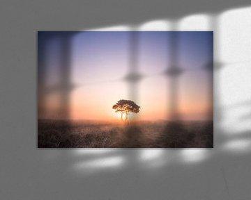 Die Einsamen... von Niels Barto