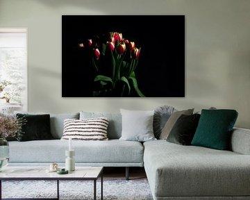 Tulpen von Gert-Jan Kamans