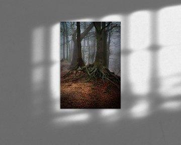 Roots 2 van René Vierhuis