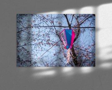 Lampion tussen bloesems van Mickéle Godderis