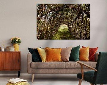 Tunnel der natuur van Gina Peeters Fotografie