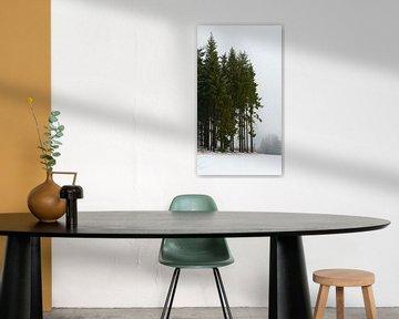 Groepje bomen in winters landschap van Koen Leerink
