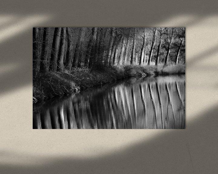 Beispiel: Bäume entlang des Kanals von Rik Verslype
