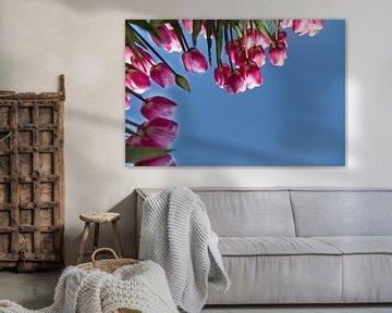 Tulpenpracht von Willy Sybesma