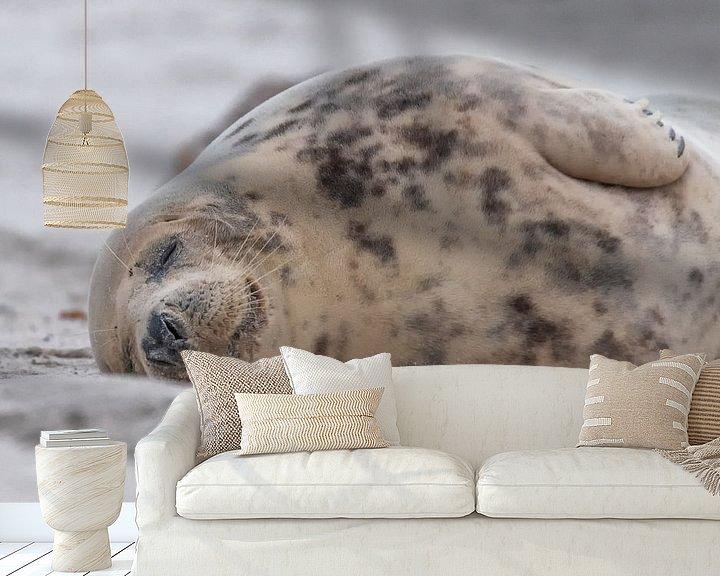 Beispiel fototapete: schlafende Robbe am Strand von Desirée Couwenberg