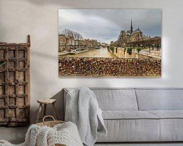 Notre-Dame mit Schleusen an der Pont de l'Archevêché von Dennis van de Water