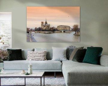 Notre-Dame Parijs aan de Seine van Dennis van de Water