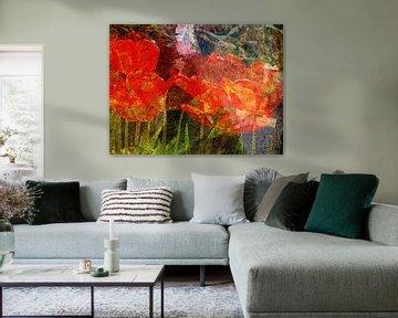 Tulpen unter japanischem Ahorn von Anita Snik-Broeken
