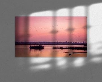 het meertje De Merken, midden in het Wormer en Jisperveld bij zonsondergang van Studio de Waay