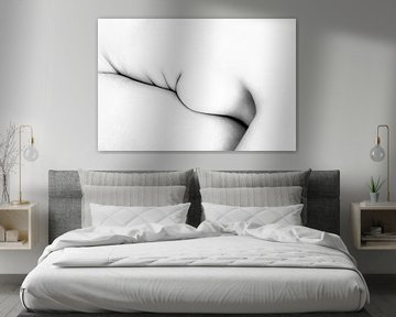 Artistiek Naakt van een Vrouw in High Key Bodyscape van Art By Dominic