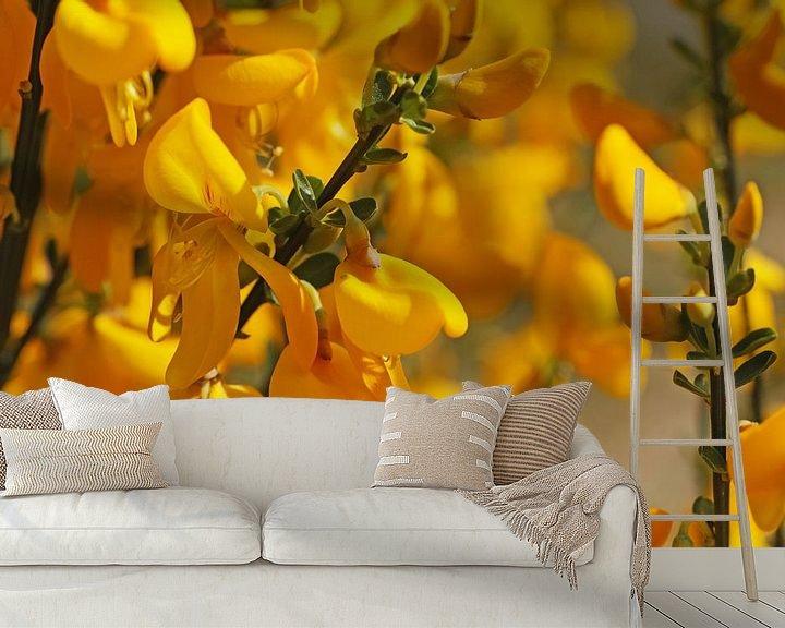 Sfeerimpressie behang: Zonnige gele brem van Wieland Teixeira