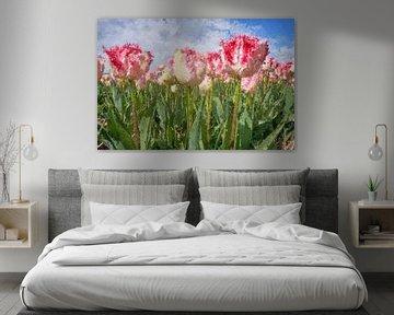 close-up van kleurrijke tulpen