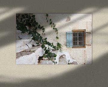 oud raampje met klimop van gj heinhuis