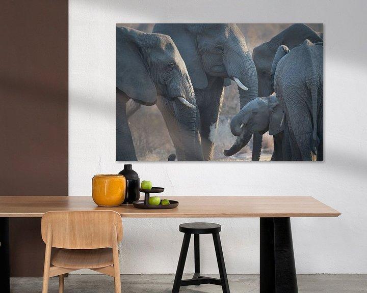 Beispiel: junger Elefant von gj heinhuis