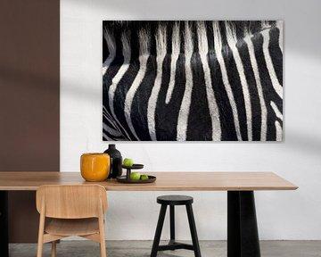 Zebra-Abstrakt von gj heinhuis
