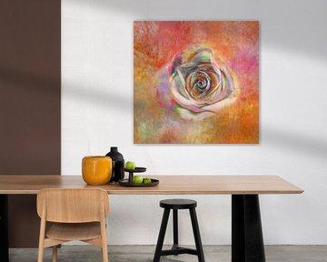 Décoration Rose sur Claudia Gründler