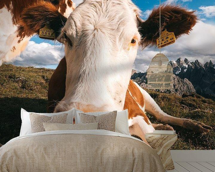 Beispiel fototapete: Italienische Kühe auf der Weide mit den Dolomiten im Hintergrund von Michiel Dros