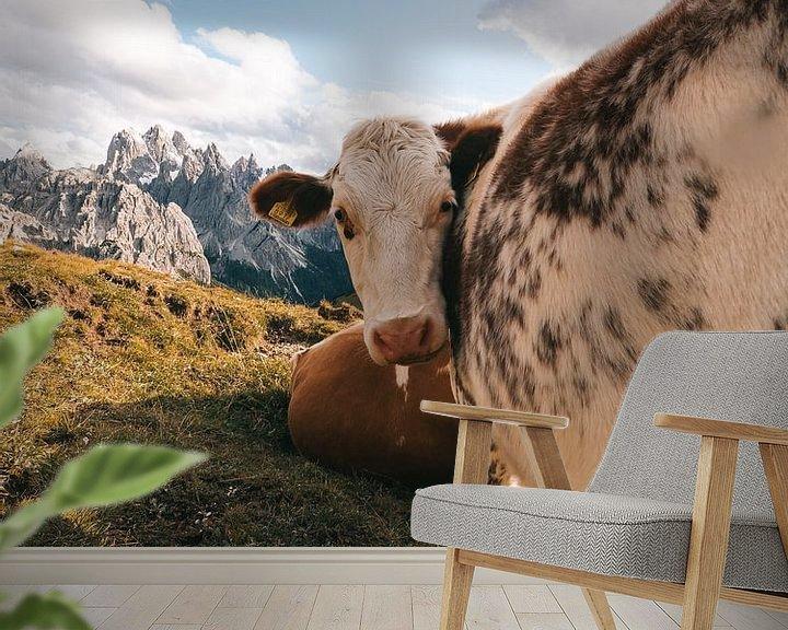 Beispiel fototapete: Kuh in den italienischen Dolomiten mit den Bergen im Hintergrund von Michiel Dros