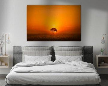 Eenzame boom van Niels Barto