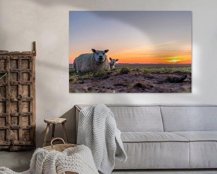 Sfeerimpressie: Moeder met lammetje Zonsondergang Texel van Texel360Fotografie Richard Heerschap
