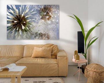 Feuerwerk von Löwenzahn von Anouschka Hendriks