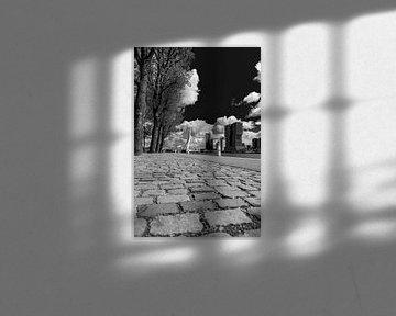 Der Weg zur Wolkenstadt von Klaus Lucas