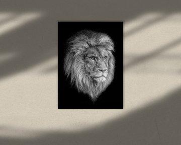 Simba von Edwin Benschop