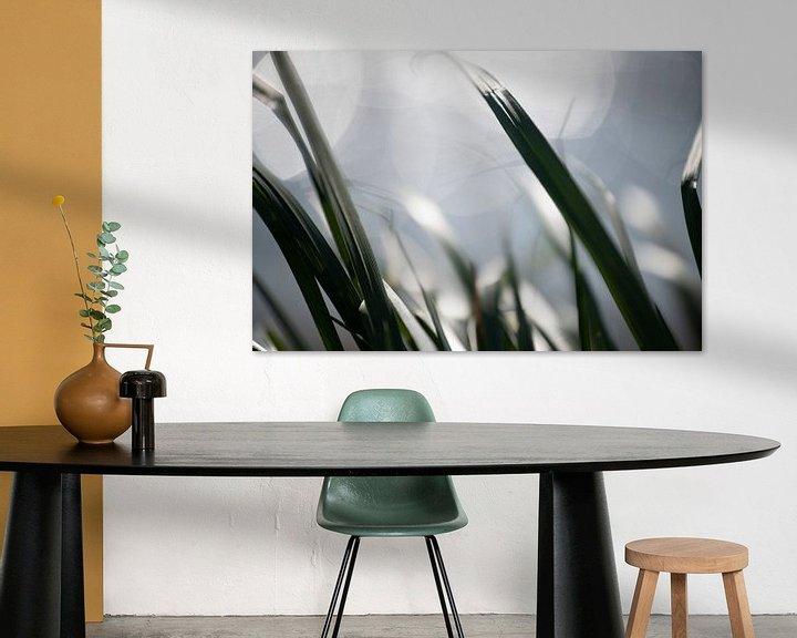 Sfeerimpressie: Gras van Petra Slingenberg