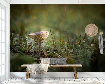 Op een grote paddenstoel van Danique van Gurp