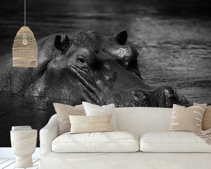 Sfeerimpressie behang: Nijlpaard van Ed Dorrestein